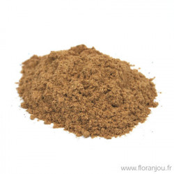 TILLEUL aubier rouge poudre