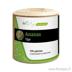 Gélules Ananas tige