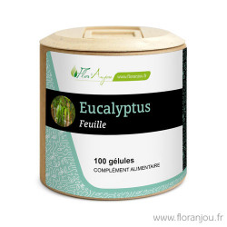 Gélules Eucalyptus feuille