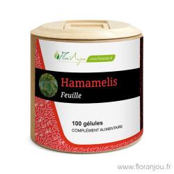 Gélules Hamamélis feuille