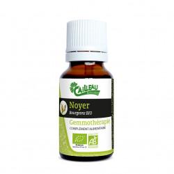 Noyer - Gemmothérapie BIO