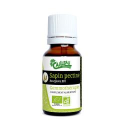 Sapin - Gemmothérapie BIO