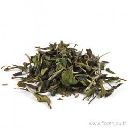 Thé blanc Bai Mu Dan