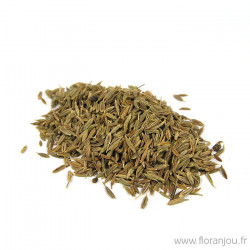 Cumin fruit BIO