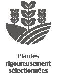Vignette-Plante-rigoureusement-selectionnees.png